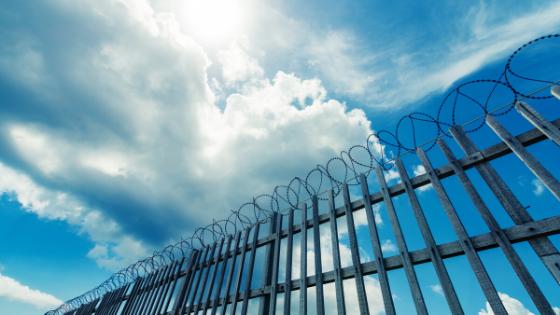 Prison Fence Shining Bright